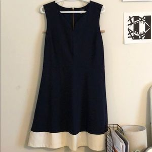 The Limited Navy and White Dress (L)